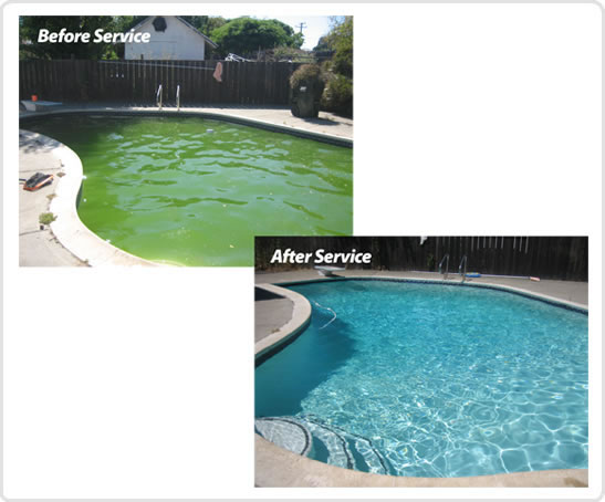 what to do if your pool turns green pool services in texas. Black Bedroom Furniture Sets. Home Design Ideas