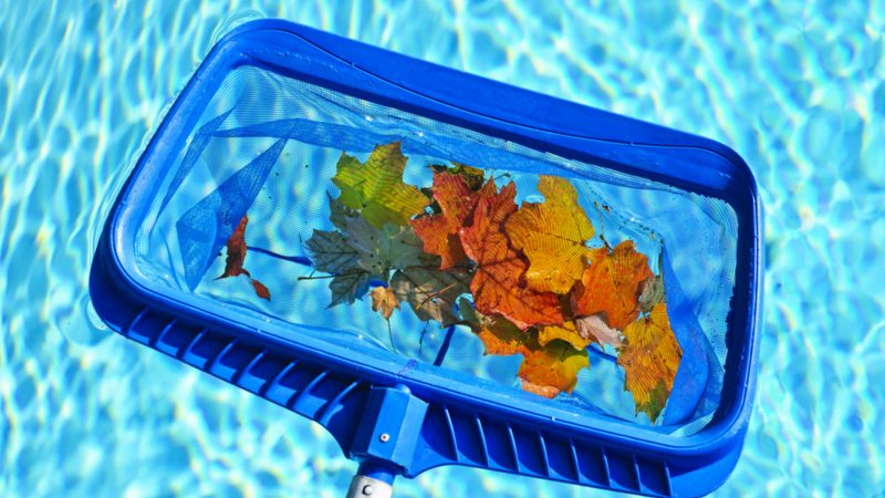 Fall Pool Care Tips